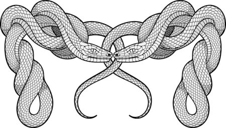 rope folk: Image of two twisted snakes. Decorative element.