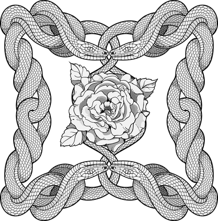 rope folk: Rose in a frame made of four twisted snakes Illustration