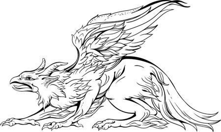 isolated image of griffin, close-up view, black and white
