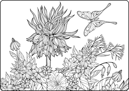 coloring sheet: cololoring page with summer flowers and butterfly Illustration