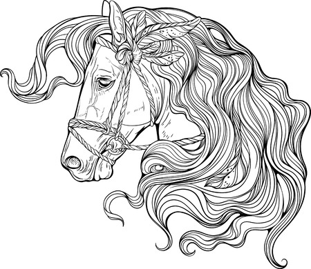 coloring sheet: Portrait of a horse with long decorated mane. Coloring page.