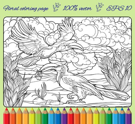 Coloring page with two hornbills and clouds. Frame with color pencils.