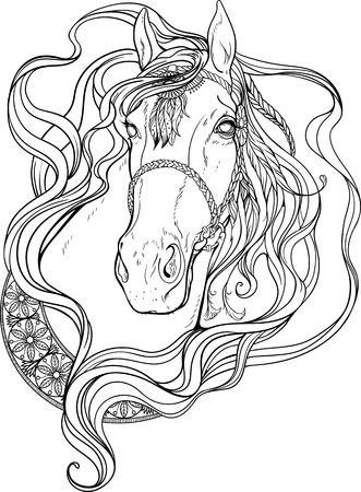 coloring sheet: Portrait of a horse decorated with strips and feathers. Coloring page.