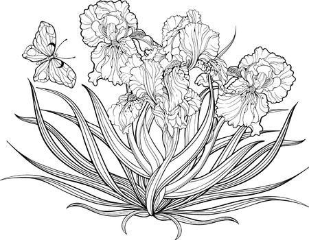 Beste Malvorlagen Für Harte Blumen Ideen - Ideen färben - blsbooks.com