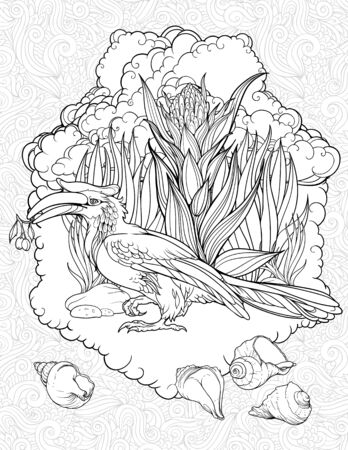 hornbill: Coloring page with hornbill and shells Illustration