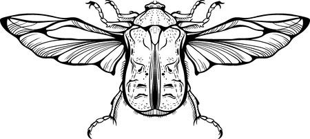 Close-up drawing of a bug symbol.  イラスト・ベクター素材