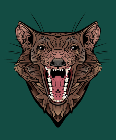 Isolated colorful image of an angry tasmanian devil.