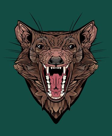 image of an angry tasmanian devil.