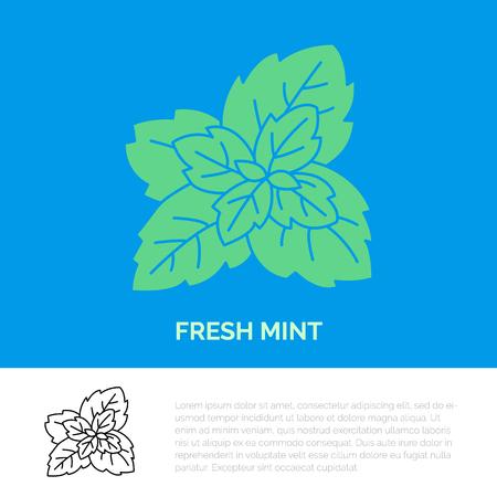 Modern vector flat icon of mint leaves. Fresh food logo. Flat symbol for peppermint gum. Freshness design element for site, mint emblem. Organic products business logotype, mint leaf illustration.