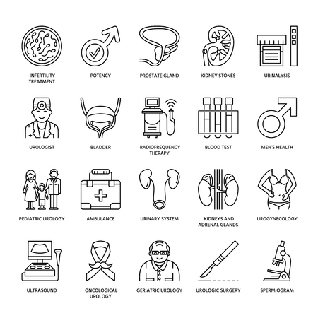 urologist: Modern vector line icons of urology. Elements - urologist, bladder, oncological urology, kidneys, adrenal glands, prostate. Linear medical pictograms with editable stroke for clinic, potency problem.