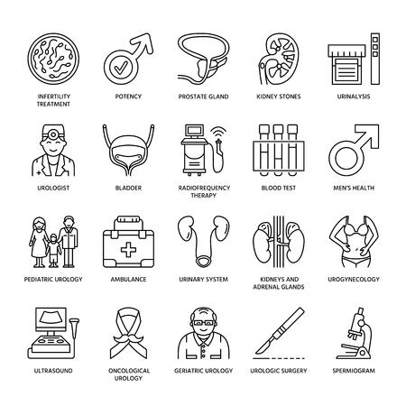 Modern vector line icons of urology. Elements - urologist, bladder, oncological urology, kidneys, adrenal glands, prostate. Linear medical pictograms with editable stroke for clinic, potency problem.