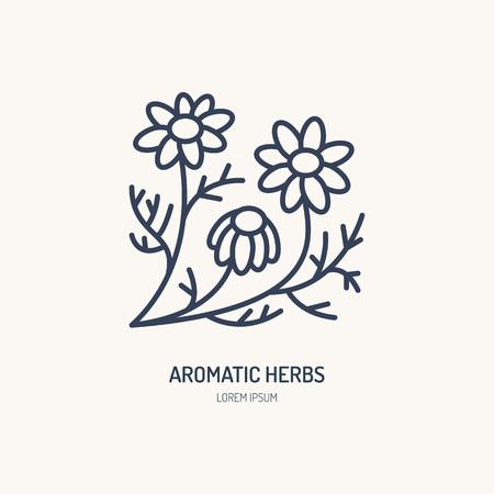 Icône de vecteur de camomille. Logo d'herbes aromatiques, signe de la guirlande. Illustration linéaire pour le thé à la camomille naturelle.