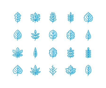 Autumn leaves flat line icons. Leaf types, rowan, birch tree, maple, chestnut, oak, cedar pine, linden,guelder rose Thin signs of nature plants.