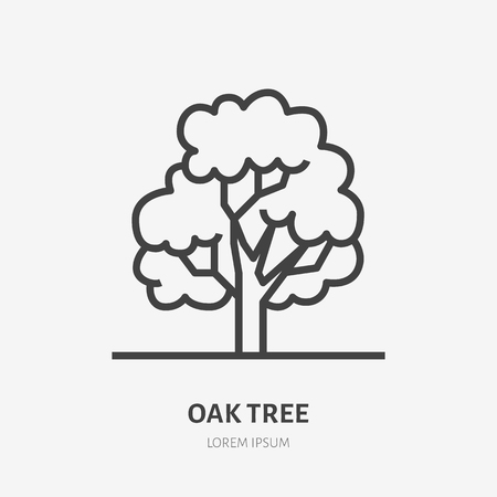 Oak tree flat line icon. Vector thin sign of park plant, ecology logo. Nature illustration, forest symbol.
