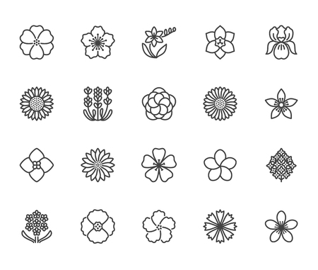 Flowers flat line icons. Beautiful garden plants - sunflower, poppy, cherry flower, lavender, gerbera, plumeria, hydrangea blossom. Thin signs for floral store. Pixel perfect 64x64. Editable Strokes