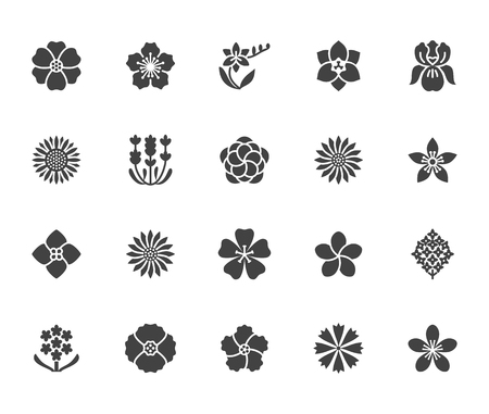 Flowers flat glyph icons. Beautiful garden plants - sunflower, poppy, cherry flower, lavender, gerbera, plumeria, hydrangea blossom. Signs for floral store. Solid silhouette pixel perfect 64x64. Фото со стока - 116446205