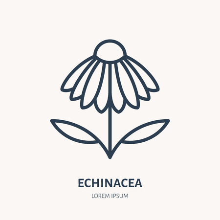 Chamomile flat line icon. Medicinal plant echinacea vector illustration. Thin sign for herbal medicine logo.
