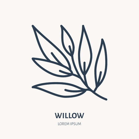 Willow flat line icon. Medicinal plant leaves vector illustration. Thin sign for herbal medicine, tree branch logo.