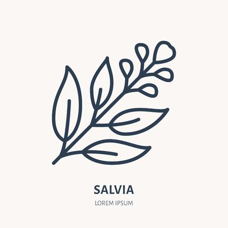 Salvia, salvia icona linea piatta. Illustrazione di vettore di foglie di piante medicinali. Segno sottile per la fitoterapia, logo del ramo di un albero. Logo