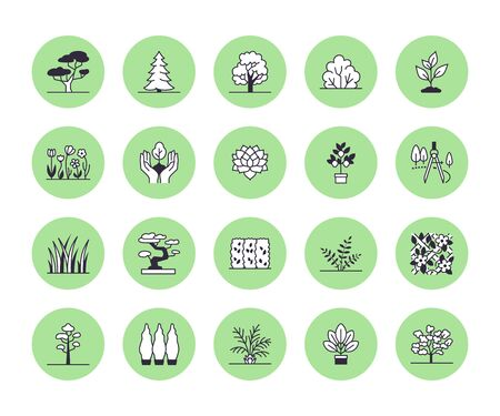 Trees flat line icons set. Plants, landscape design, fir tree, succulent, privacy shrub, lawn grass, flowers vector illustrations. Thin signs for garden store. Иллюстрация