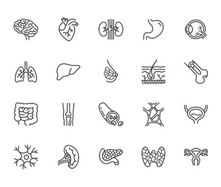 Organs, anatomy flat line icons set. Human bones, stomach, brain, heart, bladder, nervous system vector illustrations. Outline pictograms for medical clinic. Pixel perfect 64x64. Editable Strokes. Stock Illustratie