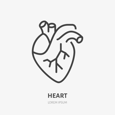 Heart flat line icon. Vector thin pictogram of human internal organ, outline illustration for cardiology clinic.