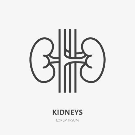 Kidneys flat line icon. Vector thin pictogram of human internal organ, outline illustration for nephrology clinic.