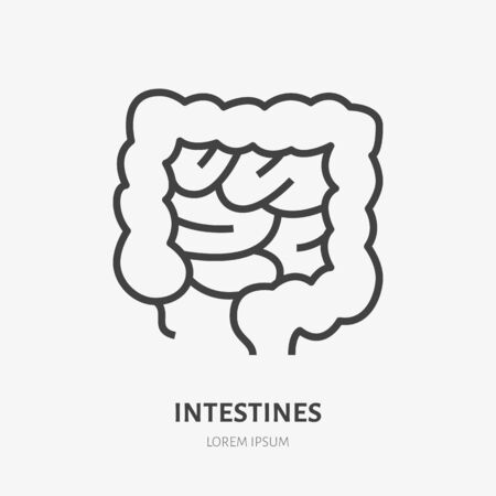 Gut flat line icon. Vector thin pictogram of human internal organ, intestines outline illustration for medical clinic.