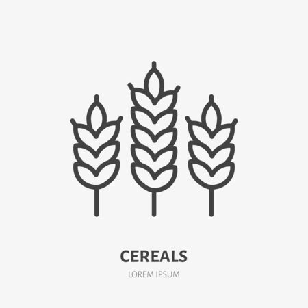 Wheat line icon, vector pictogram of cereals. Organic grain illustration, sign for bakery.