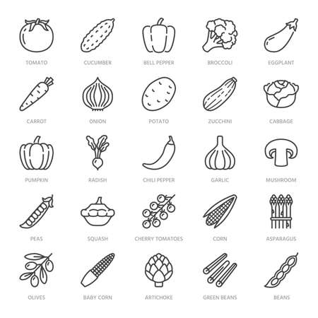 Vegetables flat line icons set. Fresh food - tomato, broccoli, corn, pepper, carrot, pumpkin vector illustrations. Outline pictogram for vegetarian grocery store. Pixel perfect 64x64. Editable Strokes Vetores