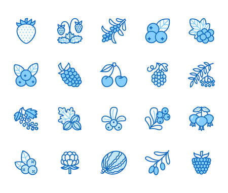 Forest berries flat line icons - blueberry, cranberry, raspberry, strawberry, cherry, rowan. Watermelon, grapes, olives illustrations for natural food store. Blue color, Editable Stroke.
