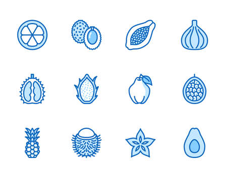 Exotic fruits, berry flat line icons set. Papaya, dragon fruit, rambutan, fig, mangosteen, avocado, starfruit vector illustrations. Outline signs for tropical food store. Blue color, Editable Stroke. 矢量图像