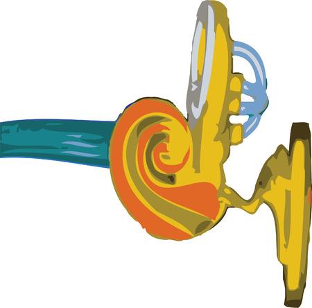 Internal ear Vector