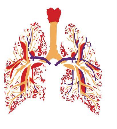 laringe: pulmones