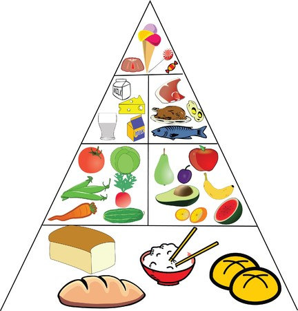 group of animals: food pyramid