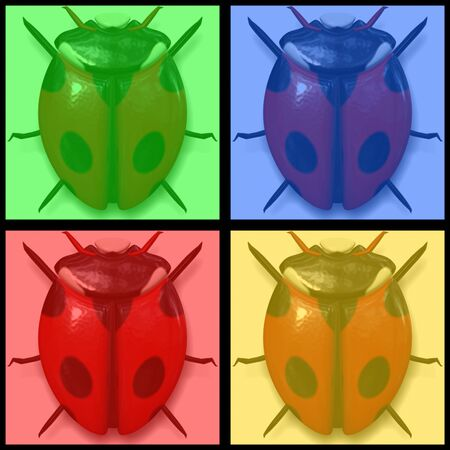 ladyfly: set of ladybirds in four colors