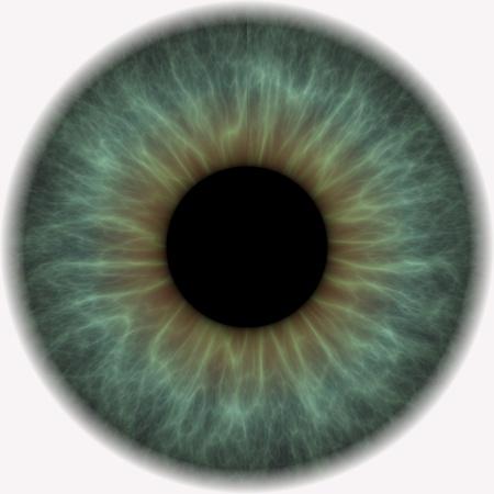 ojos de color gris con lentes negros en el centro Foto de archivo - 8876888