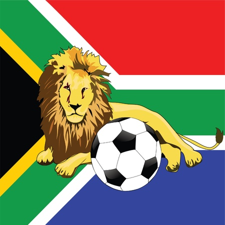 soccer and the lion in south africa Stock Photo - 13053356