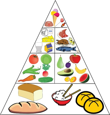 carbohydrate: Food Pyramid Illustration