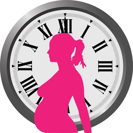 gynecological: pregnancy clock Illustration
