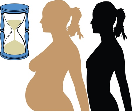 pregnancy watch Stock Vector - 13497217