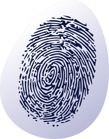 thumbprint on egg shell Stock Vector - 13700278