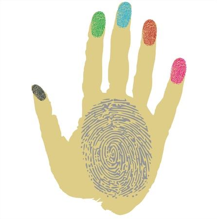 fingermark: fingers and thumbprint