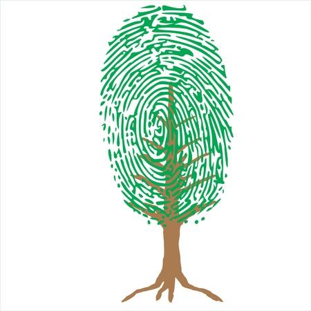 thumb print: unique green plant
