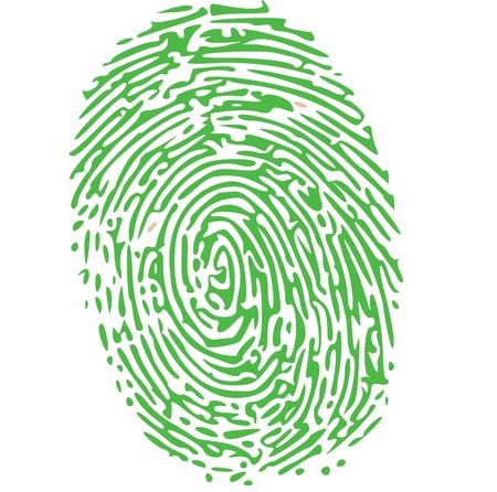 fingermark: thumbprint in green