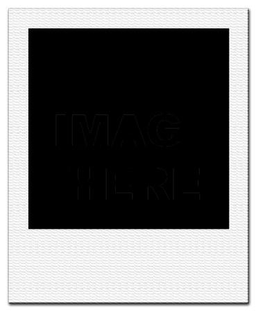 nature photo: blank print isolated on white background  Stock Photo