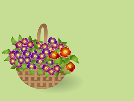 Illustration  basket with flowers Vector