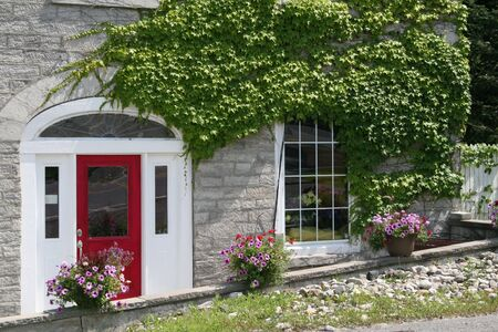Modernized stone building with growing ivy