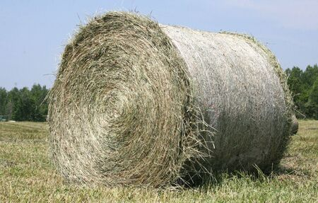 Round Bale Of Hay photo