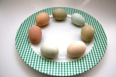 Colored eggs in a circle on a ginham plate Stock Photo